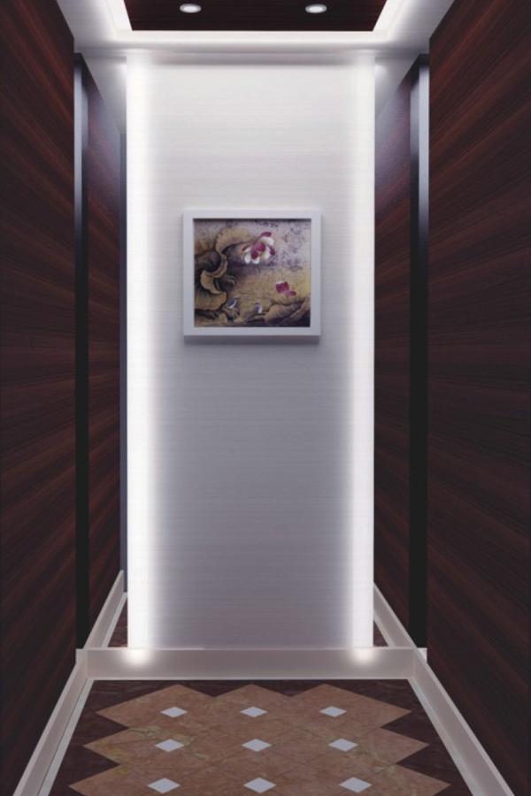 DOER-V33现代简约别墅电梯