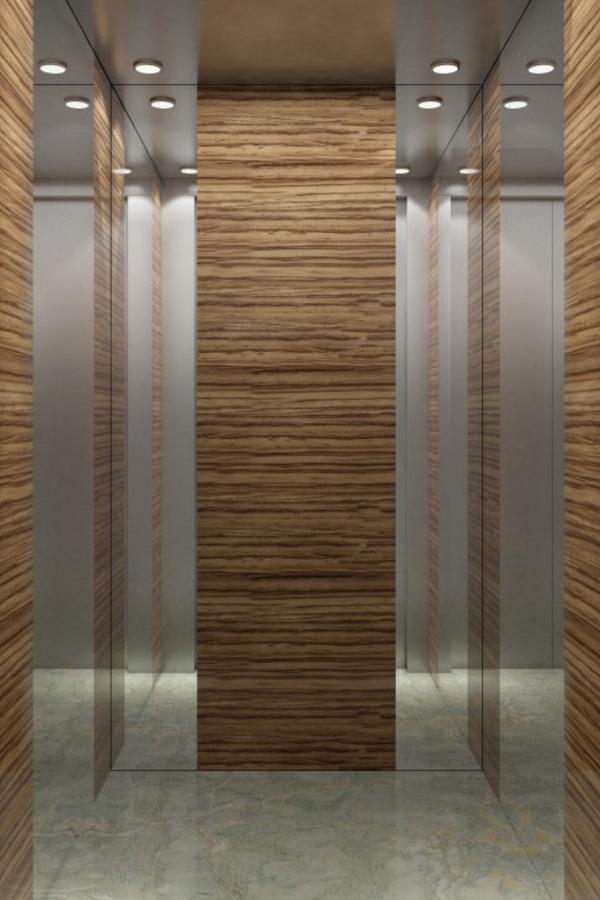 DOER-VO9现代简约别墅电梯