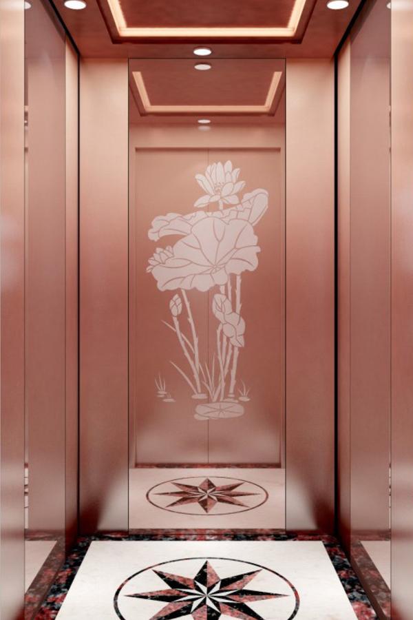 内蒙古DOER-V11中式别墅电梯