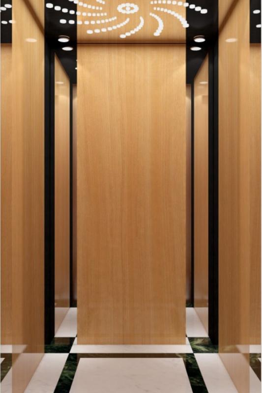 DOER-V37现代简约别墅电梯